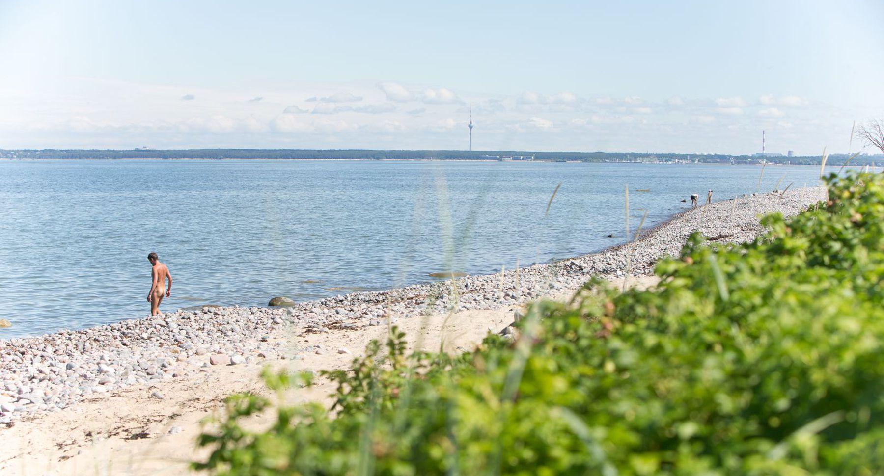 Если нудистский пляж днепропетровск сам Боровиков