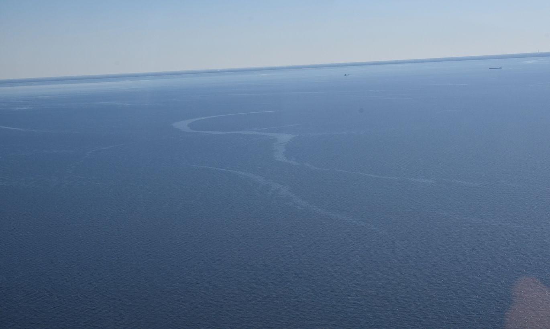 Вблизи Тойла обнаружено загрязнение моря