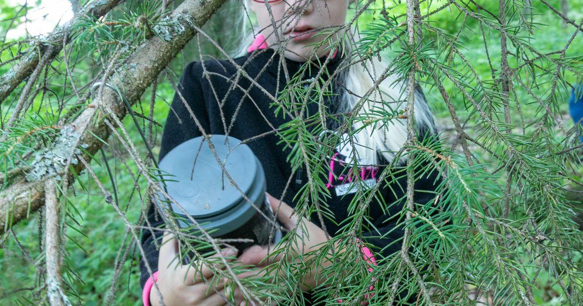 Sagadi looduskool esitleb seiklusrikkaid perepäevi