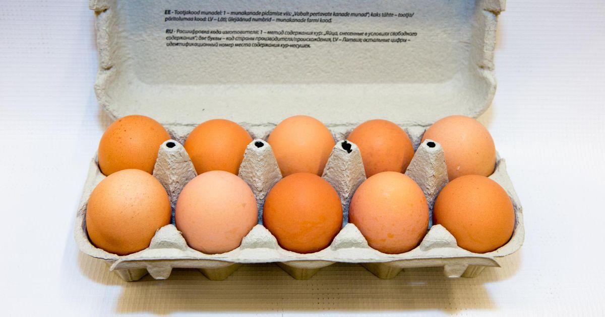 Poed varusid veokitäite viisi mune