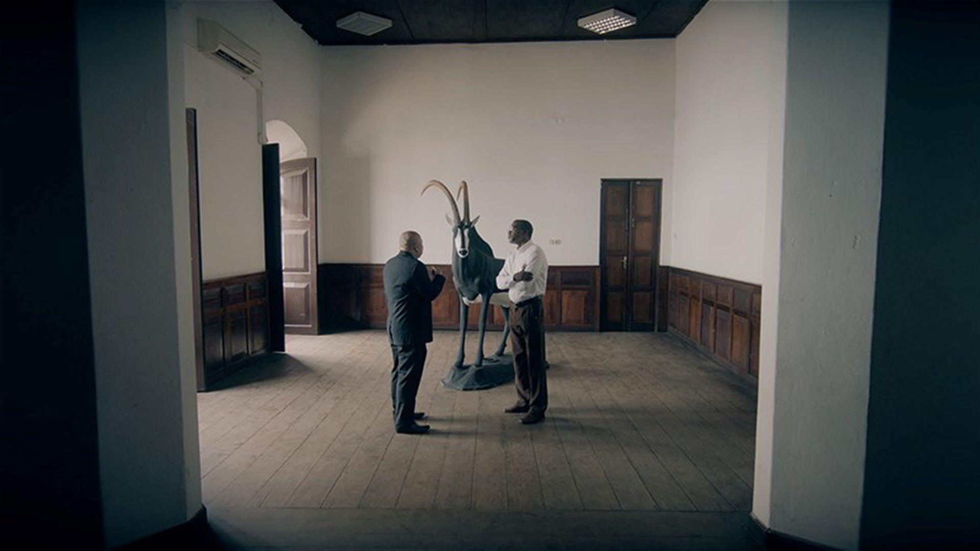 EKKMis saab näha kunstifilmide programmi: