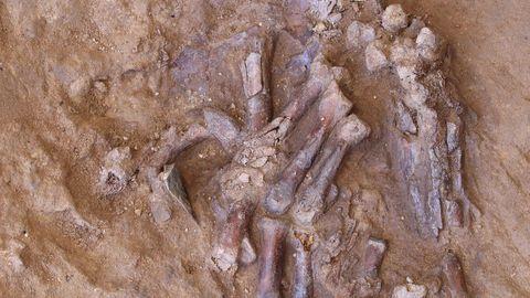 Neandertallase sõrmeluud.