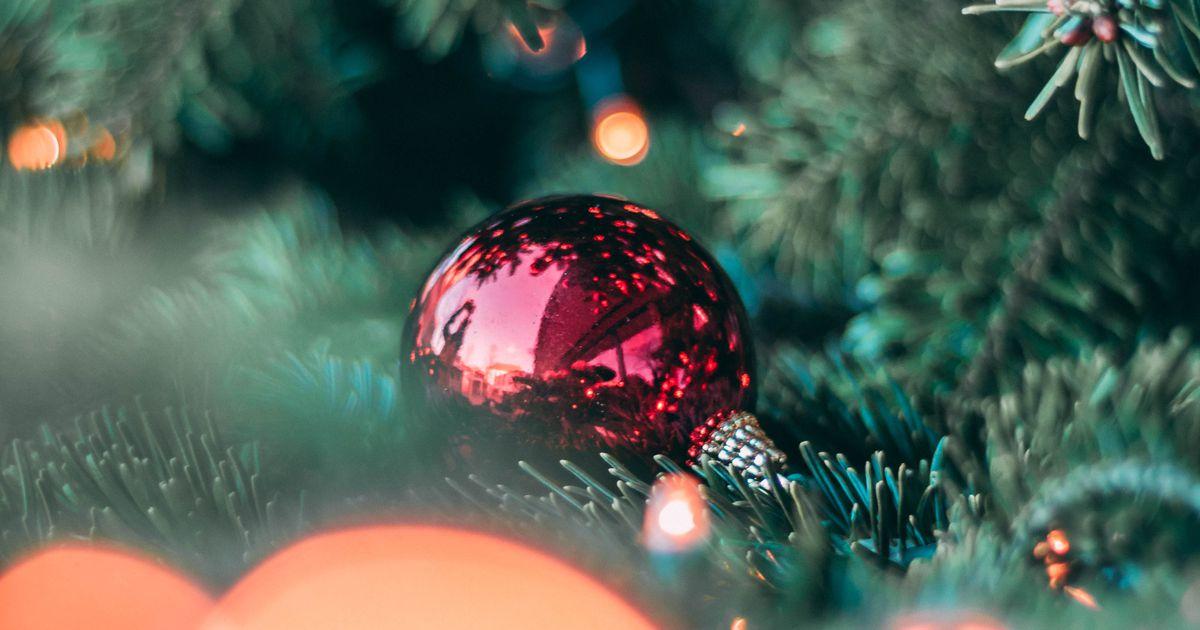 Jõulukuusk jõuab täna Kuressaarde