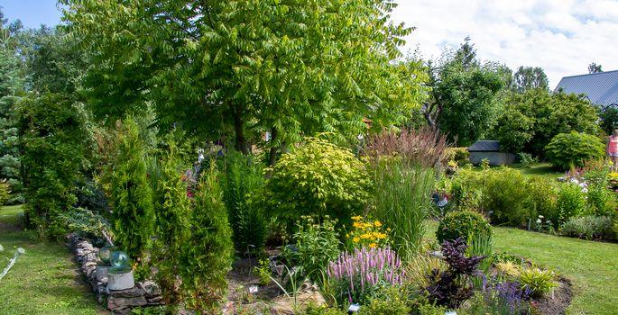 cb9b8f64ada Esimest korda siia aeda sattunut üllatav vormi- ja värviküllus. | FOTO:  IMG_3833