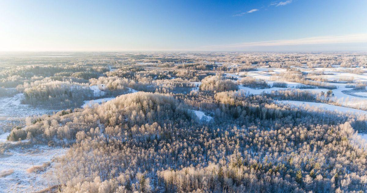 e9c4945c675 Keskkonnaamet kutsub juubelit tähistavaid rahvusparke jäädvustama - Uudised  - Lõuna-Eesti Postimees