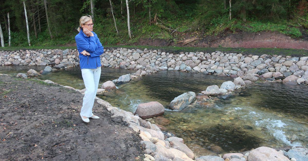 Kalapääs Tille veski juures avas kaladele rännutee Ahja jõel