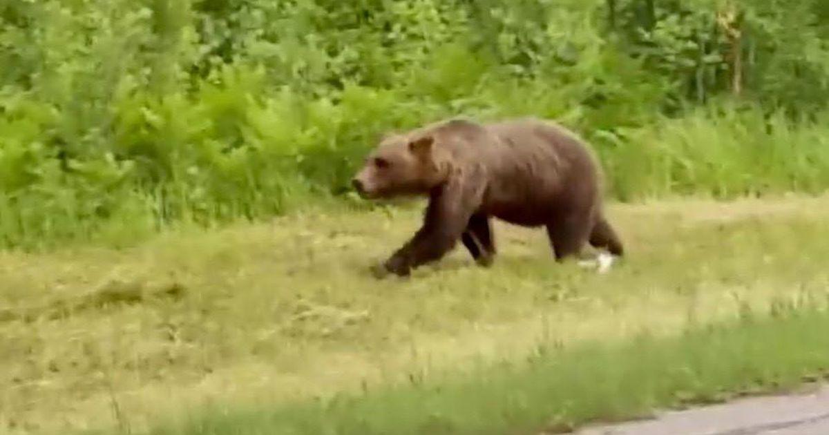 Karujahilimiidid selguvad uuel nädalal