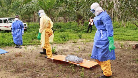 Guinea kaguosas suri ebolasse neli inimest