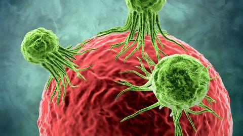 Maksarakke ründavad vähirakud võivad tegutseda immuunsüsteemi radari all ja tulemuseks on vähkkasvaja, aga uus viirus peaks suutma neid inimorganismis hävitada, samuti treenida immuunsüsteemi neid tuvastama.