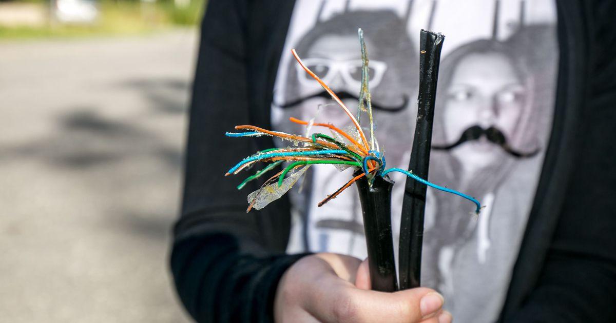 Elektroonikatööstus meelitas noored suveks tööle