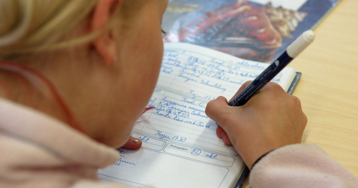 Aare Külaots: kuidas kaitsta õpilast?